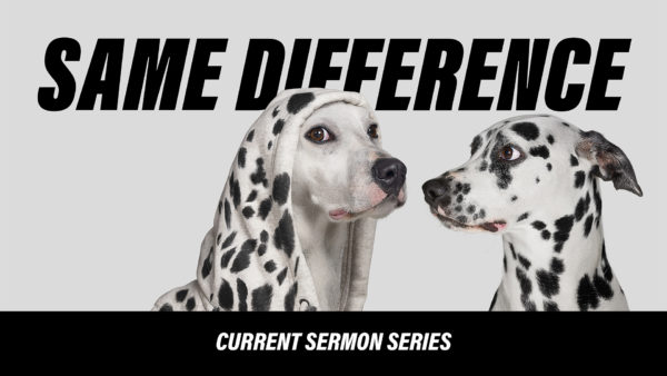 Why Jesus' Resurrection Matters: Same Difference - Week 12 Image